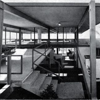 csh-26-c-buff-and-d-hensman-1966