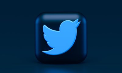 Twitter Unveils NFT Collection Amidst Waning NFT Hype