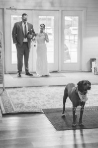 Best Wedding Photographers in Wilmington