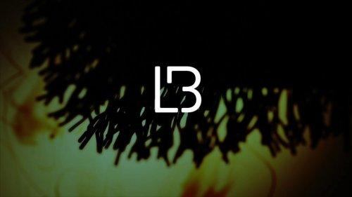 LB Tour Visual Montage 15 v02