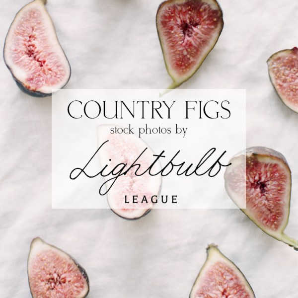Country Figs stock images by Lightbulb League