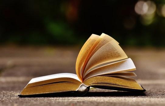 book-1738607_960_720