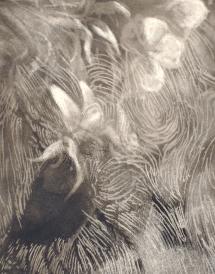 Gardening - smoke on paper - 28x39cm - 2016