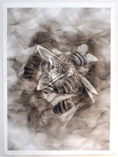 Cluster - Smoke on Paper - 24x32cm - 2015
