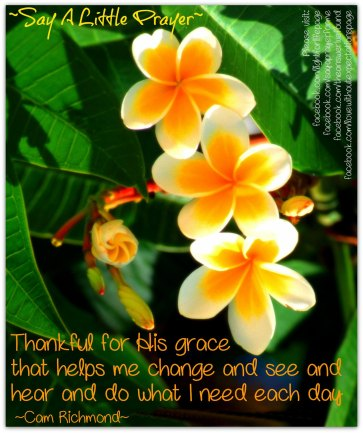 TAIF - thankful for grace