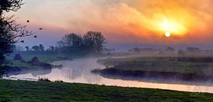 Dawn breaking through the fog on the River Fergus at Corofin Co. Clare. Photo Clare by Nature