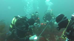 One of the underwater search teams led by the Burren SAC doing a survey during a dive in September 2014 at Mutton Island.