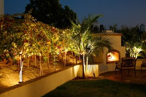 Landscape Lighting in San Diego