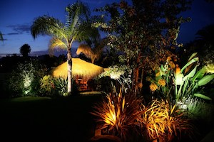 San Diego Landscape Lighting