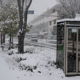 Phone box in front of snowy station