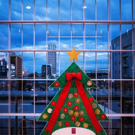 Christmas tree in front of a huge window
