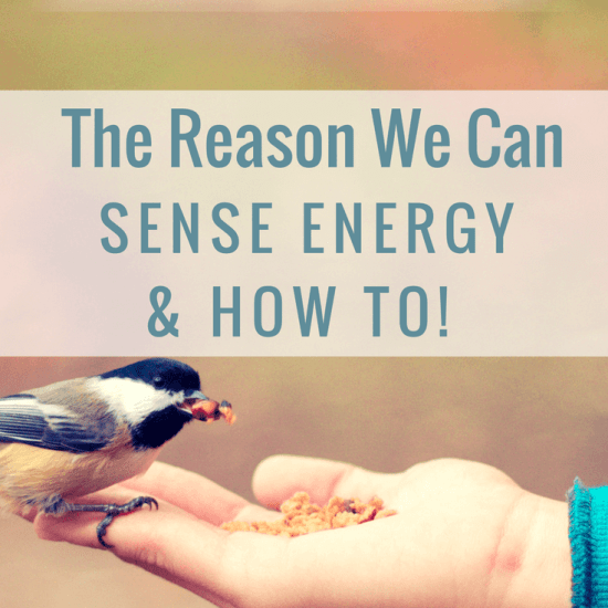 The Reason We Can Feel Energy & How To!