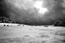 stormclouds_hayfield