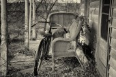 Abandoned Bicycle and Wicker