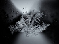 windowfrostcontinues