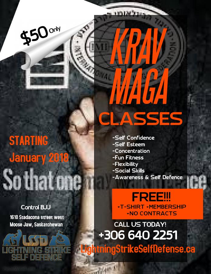 Copy of Martial Art Classes Flyer