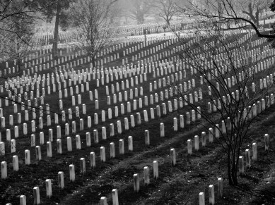 Graves of the brave