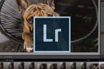 Speed Up Your Lightroom Workflow