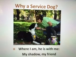 A slide from a Service Dog advocacy presentation