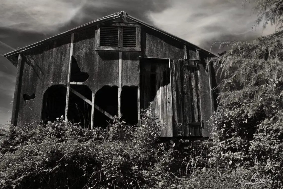 A rustic, abandoned building in the heart of New Zealand. The storm like sky, gives an atmospheric, ambiance to this long ago work shed.