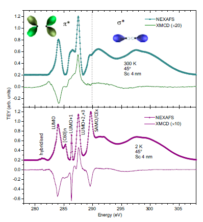 Emergent magnetism at transition-metal-nanocarbon interfaces