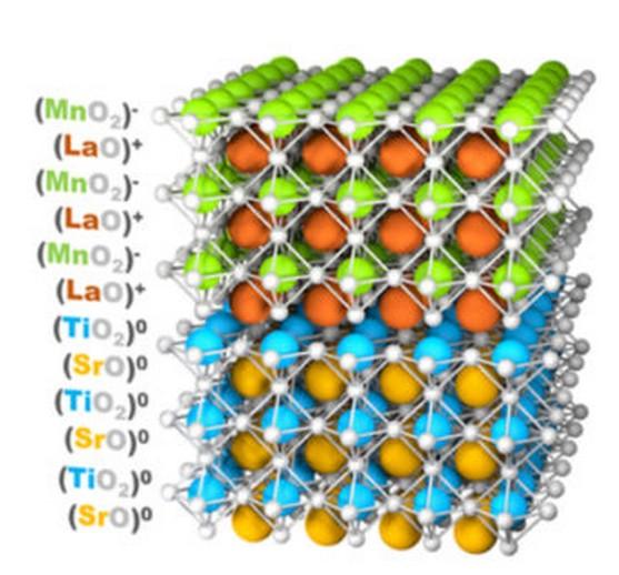 Ferromagnetism Emerges to Alleviate Polar Mismatch