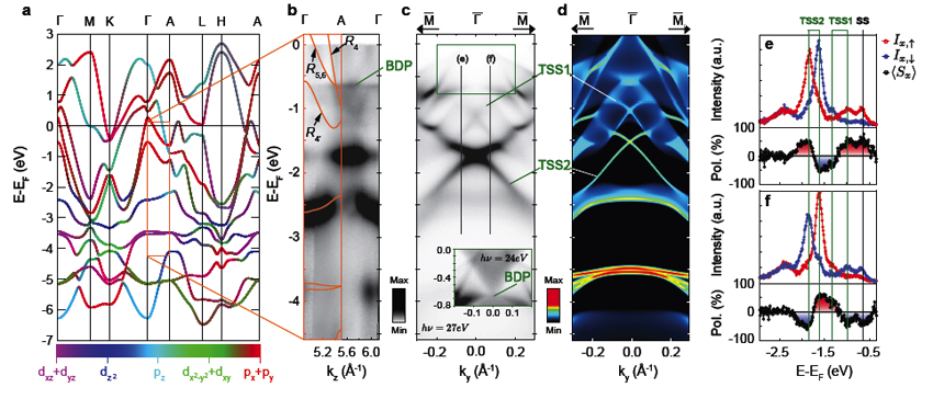 Ubiquitous formation of type-I and type-II bulk Dirac cones