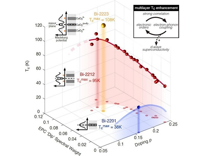 Lattice Coupling conspires in the correlated cuprate high-Tc superconductivity