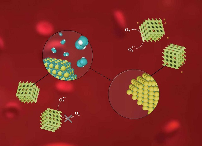 Inorganic nanoparticles activity as artificial pro-enzymes