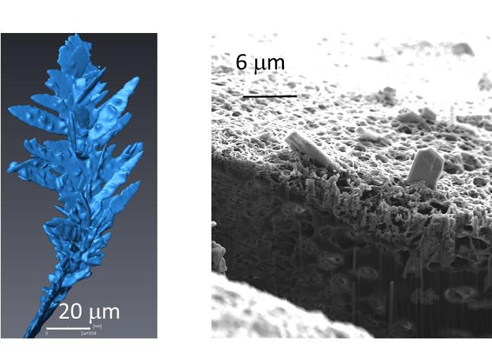 Imaging dendrite growth in zinc-air batteries