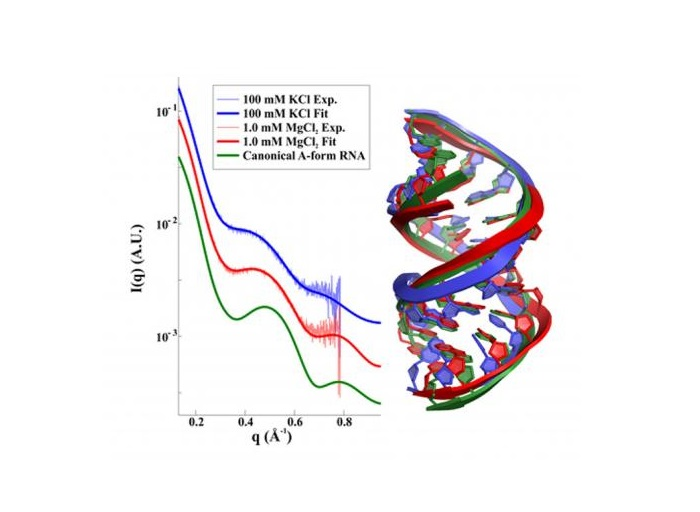 Twisting the helix: salt dependence of conformations of RNA duplexes