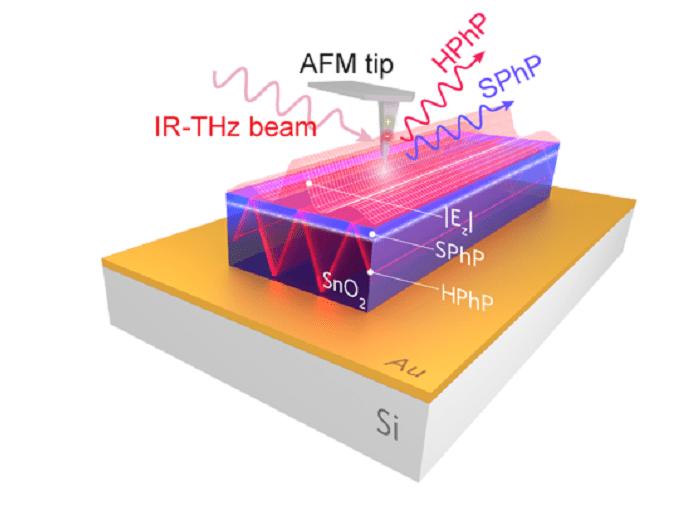 Channeling light into nanobelts