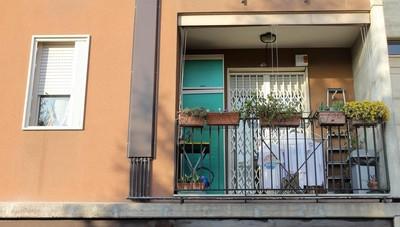 Lincendio alla Green Flor un milione di danni ipotesi dolosa  Cronaca Bergamo