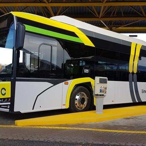 Nuovi Percorsi Orari Bus E Pensiline Linea C Tutto Quello