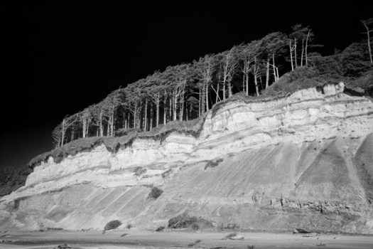 Erosion is visible along a row of trees on the cliffs rising above Beverly Beach, along the Oregon coast.