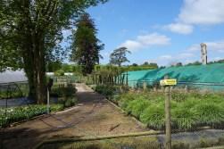 2-It's a working nursery, not a garden centre