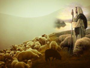 人生の意味 by イエス