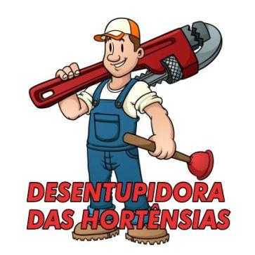DESENTUPIDORA DAS HORTENSIAS PERFIL