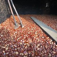 Ad Isoletta di Murialdo l'antico seccatoio delle castagne dei tecci di Calizzano e Murialdo è stato riacceso!