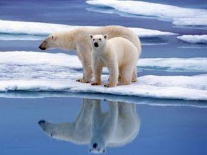 Temperature record al Polo Sud