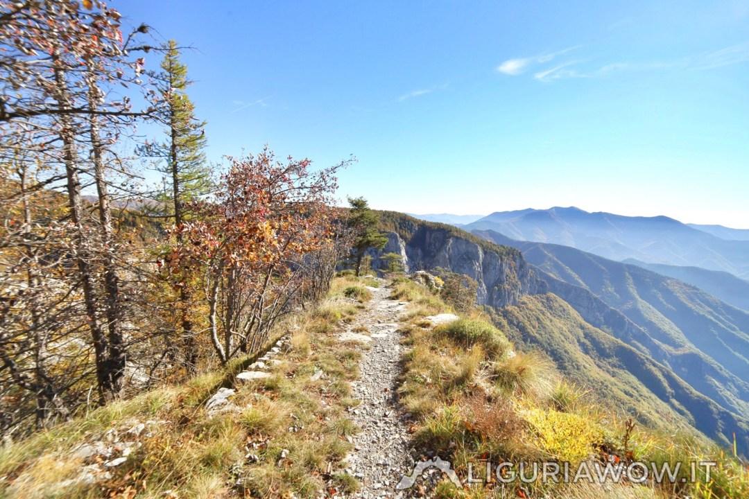 I colori dell'autunno dal Sentiero degli Alpini