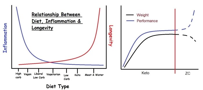 Diet_Limitation_Theory