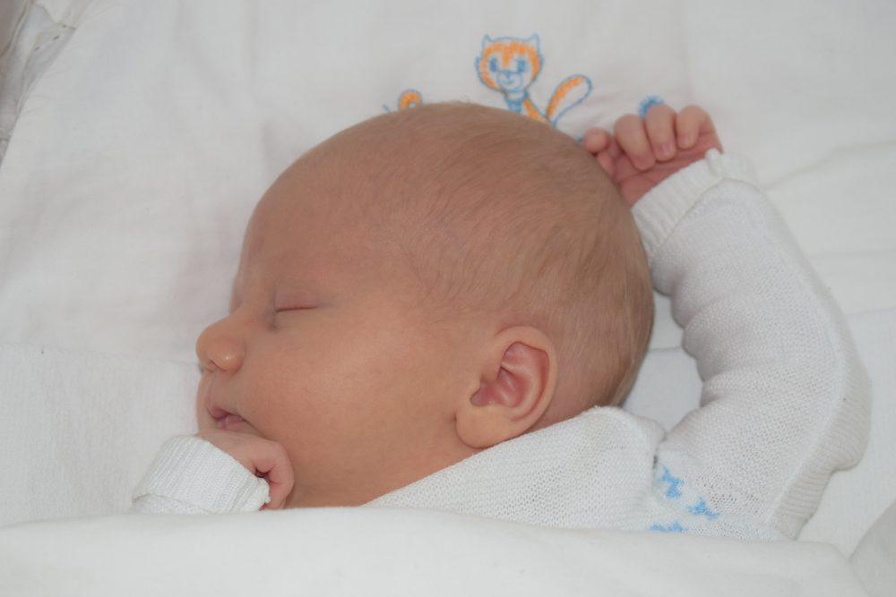 drie weken oud