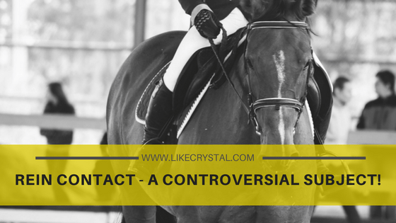 REIN CONTACT – A CONTROVERSIAL SUBJECT!