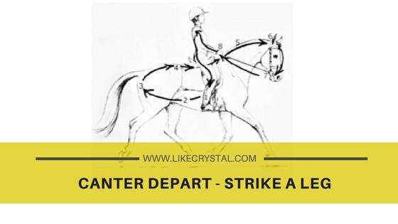 canter depart