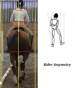 Rider Asymmtrey