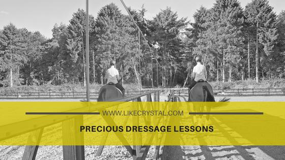 Precious Dressage Lessons