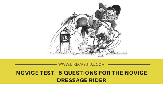NOVICE TEST – 5 Questions for the Novice Dressage Rider