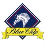 Blue Chip Feeds