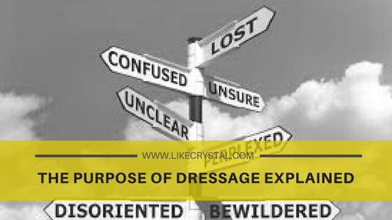 The Purpose of Dressage Explained